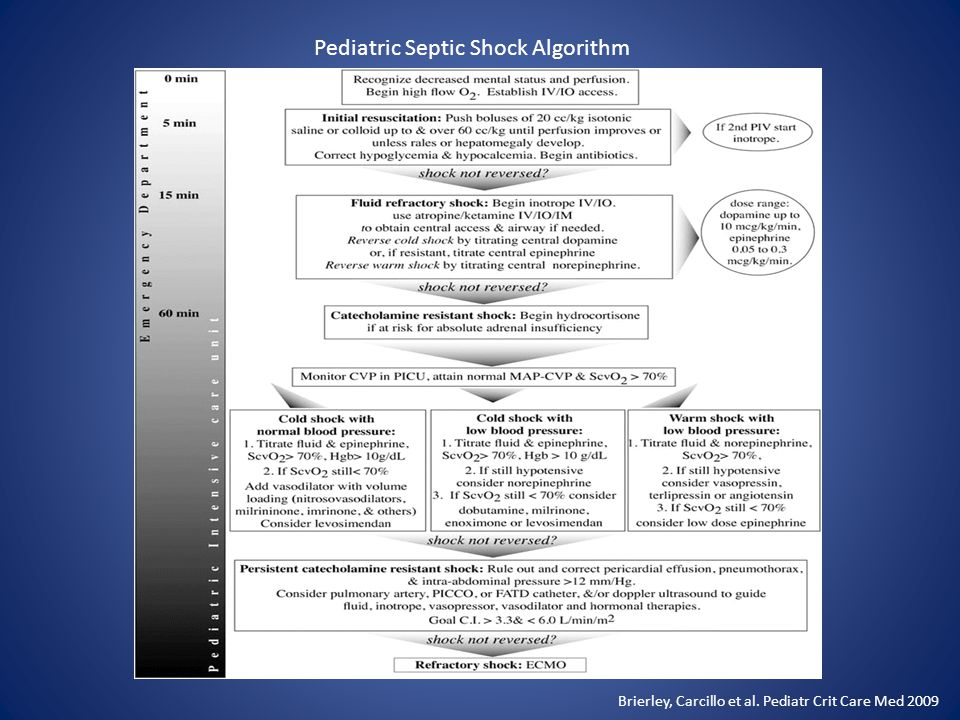 Pediatric Septic Shock Algorithm