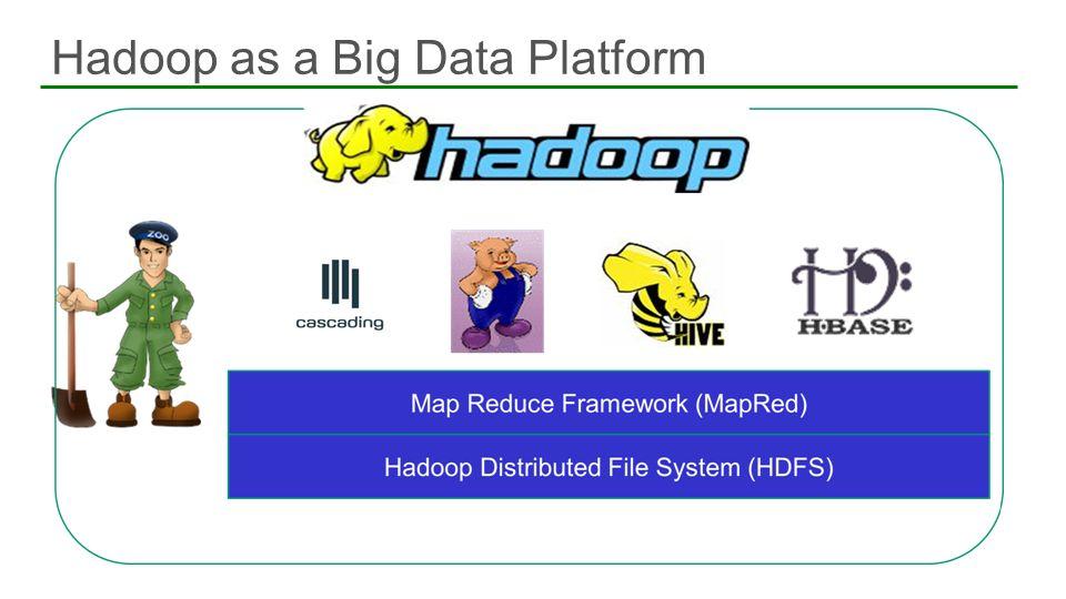 Hadoop as a Big Data Platform