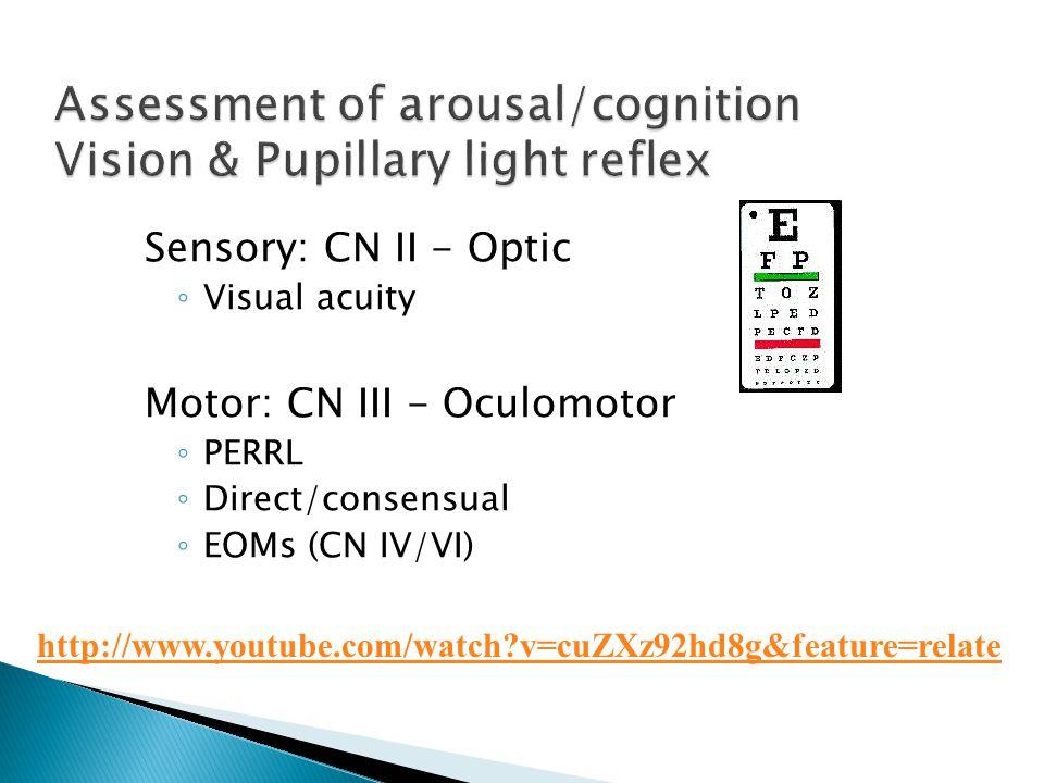 Assessment of arousal/cognition Vision & Pupillary light reflex