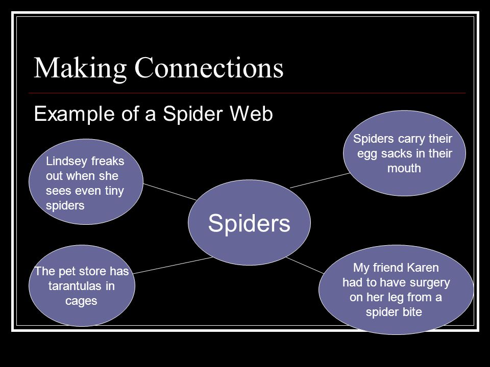 Making Connections Spiders Example of a Spider Web Spiders carry their