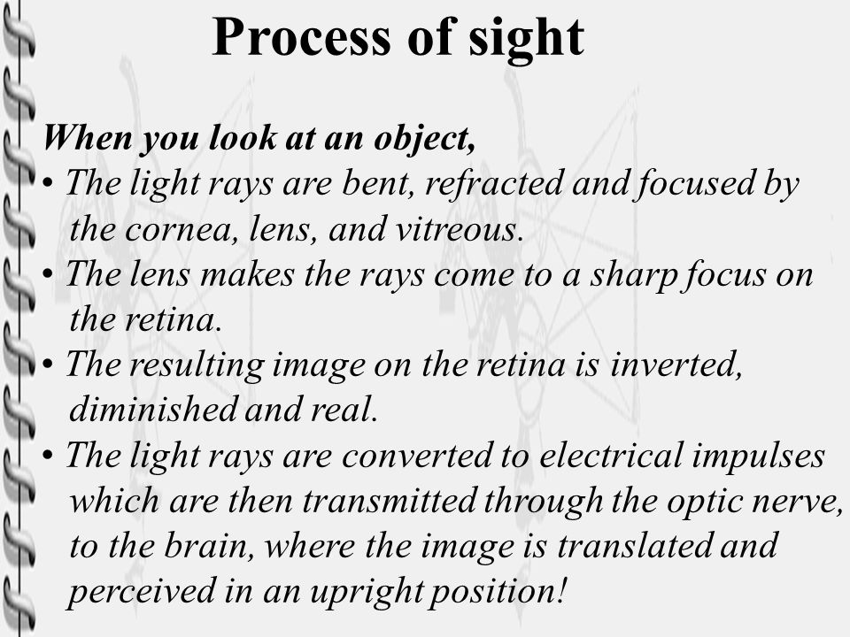 Process of sight When you look at an object,