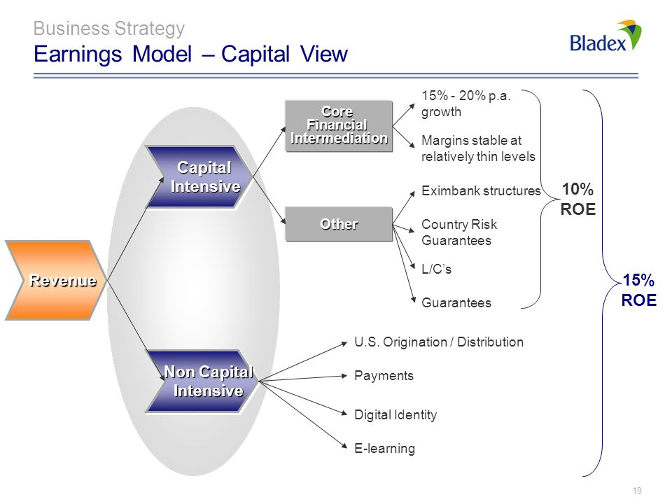 Business Strategy Earnings Model – Capital View