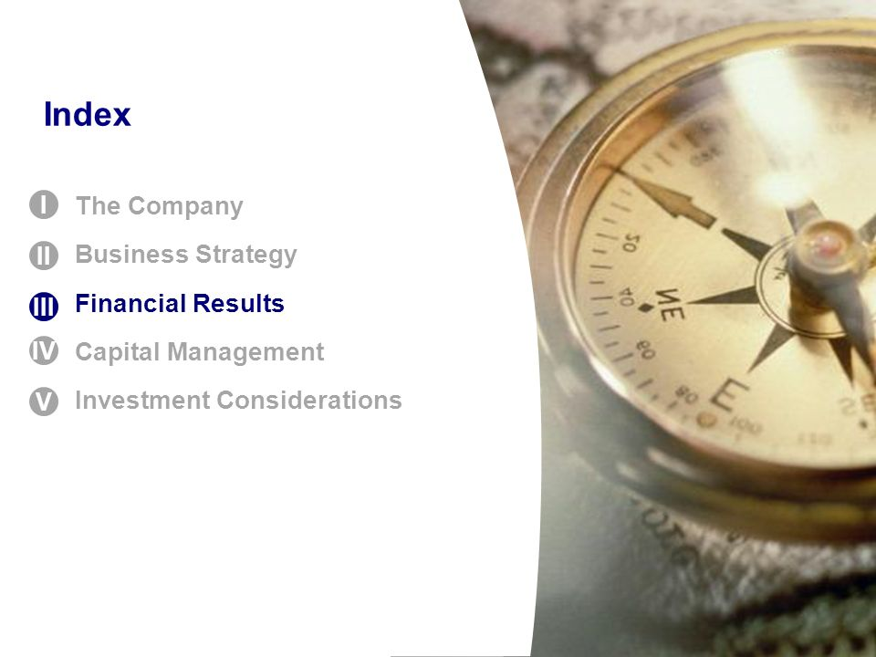 Index The Company Business Strategy Financial Results