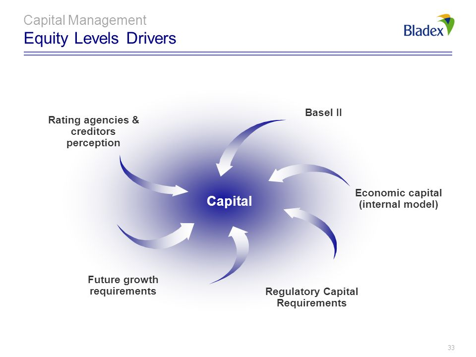 Capital Management Equity Levels Drivers