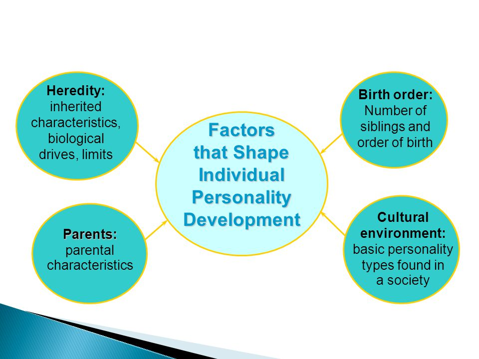 factors that shape personality Genetic factors despite the environment playing a role in personality traits, there are still genetic influences that play a role in the development of personality traits genetic similarities between the family and child can lead to children having a temperament and attitude that is similar to their parents.