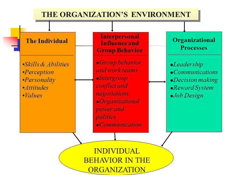 THE ORGANIZATION'S ENVIRONMENT