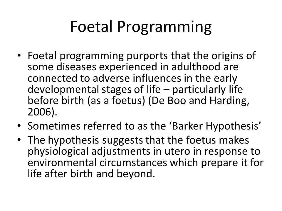 Foetal Programming