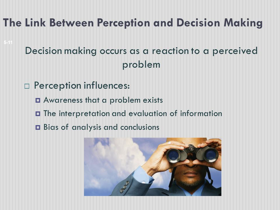 The Link Between Perception and Decision Making
