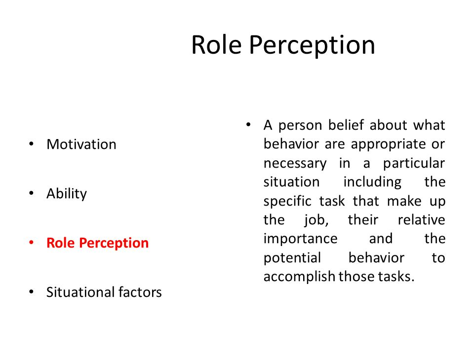 Role Perception Motivation Ability Role Perception Situational factors