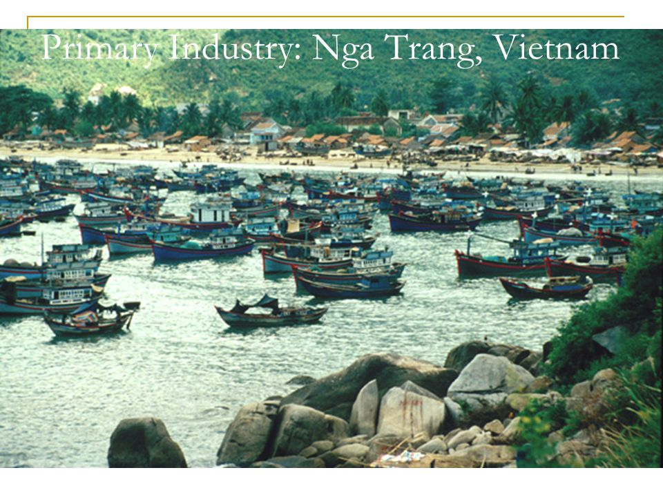 Primary Industry: Nga Trang, Vietnam