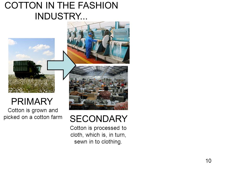 COTTON IN THE FASHION INDUSTRY...