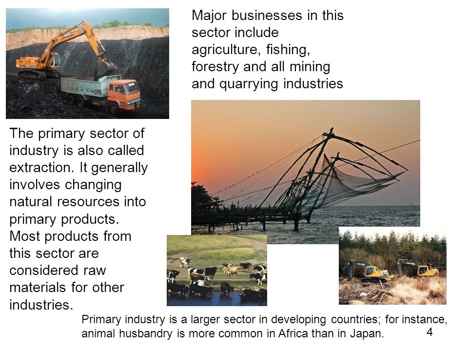 Major businesses in this sector include agriculture, fishing, forestry and all mining and quarrying industries