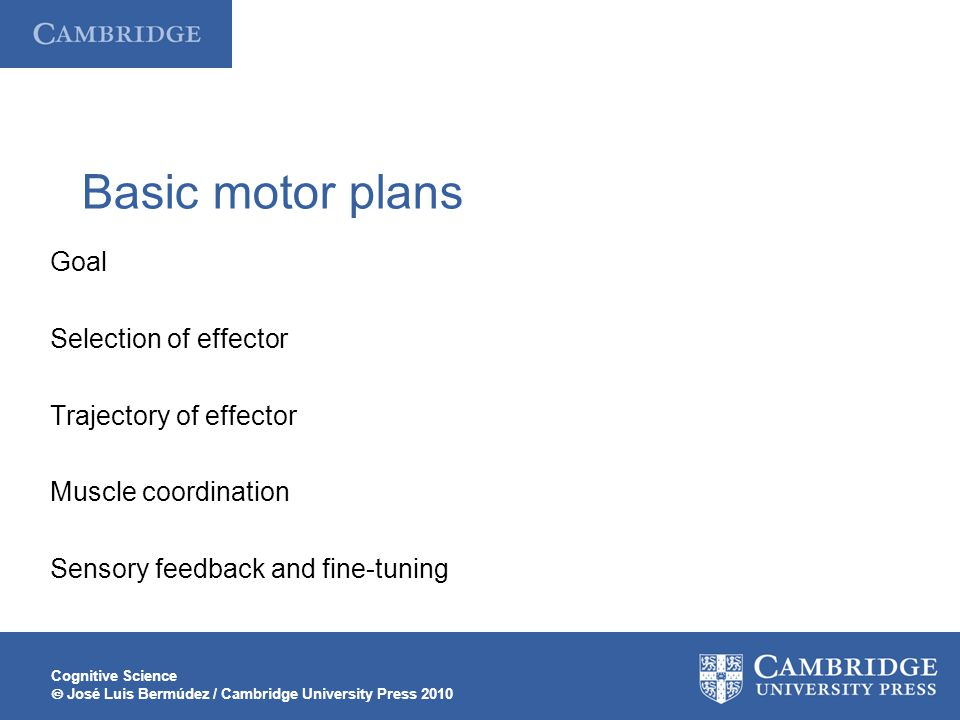 Basic motor plans Goal Selection of effector Trajectory of effector