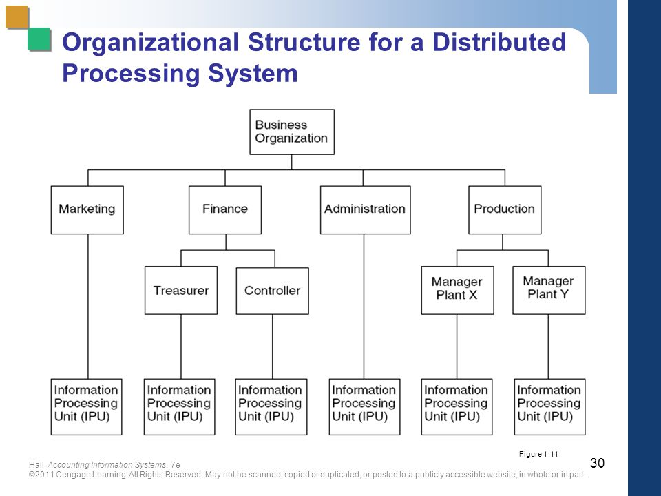 Processing System Organizational Structure for a Distributed