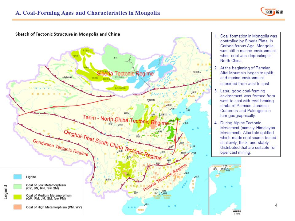 A. Coal-Forming Ages and Characteristics in Mongolia