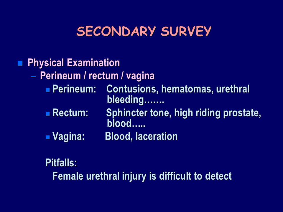 SECONDARY SURVEY Physical Examination Perineum / rectum / vagina