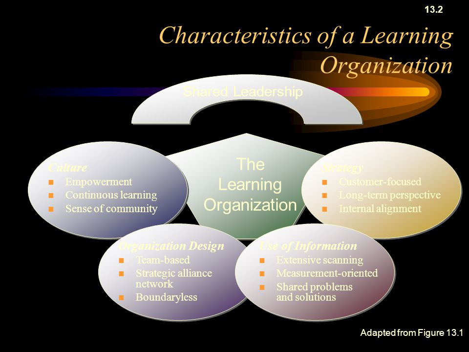 Characteristics of a Learning Organization