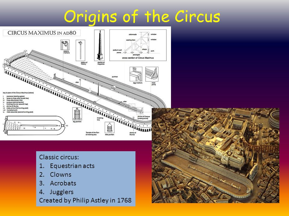 Origins of the Circus Classic circus: Equestrian acts Clowns Acrobats