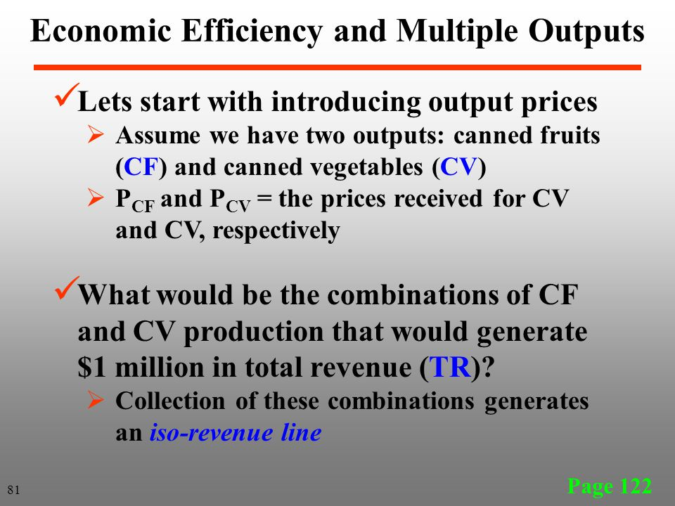 Economic Efficiency and Multiple Outputs