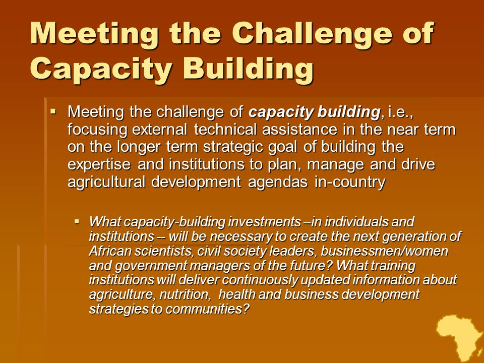 Meeting the Challenge of Capacity Building