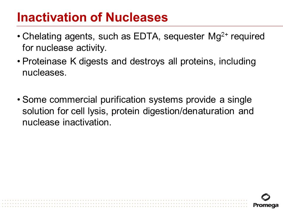 Inactivation of Nucleases