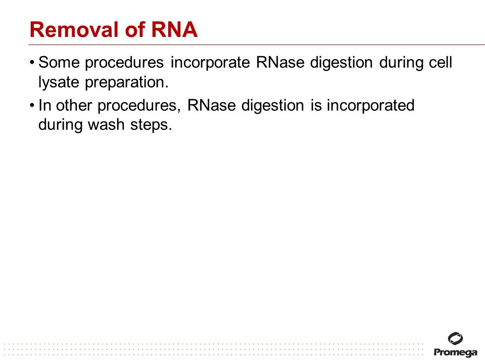 Removal of RNA Some procedures incorporate RNase digestion during cell lysate preparation.