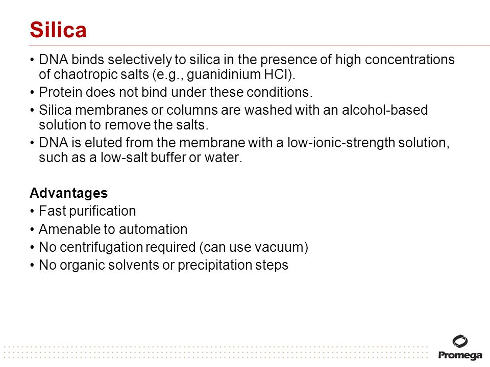 SilicaDNA binds selectively to silica in the presence of high concentrations of chaotropic salts (e.g., guanidinium HCl).