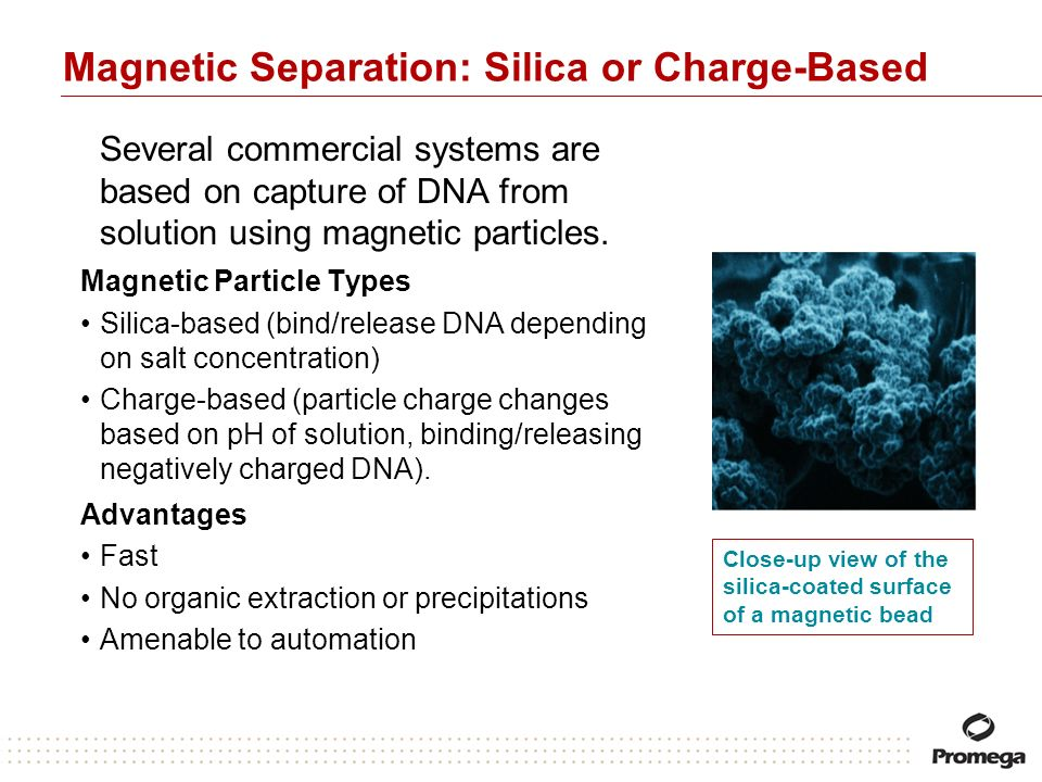 Magnetic Separation: Silica or Charge-Based