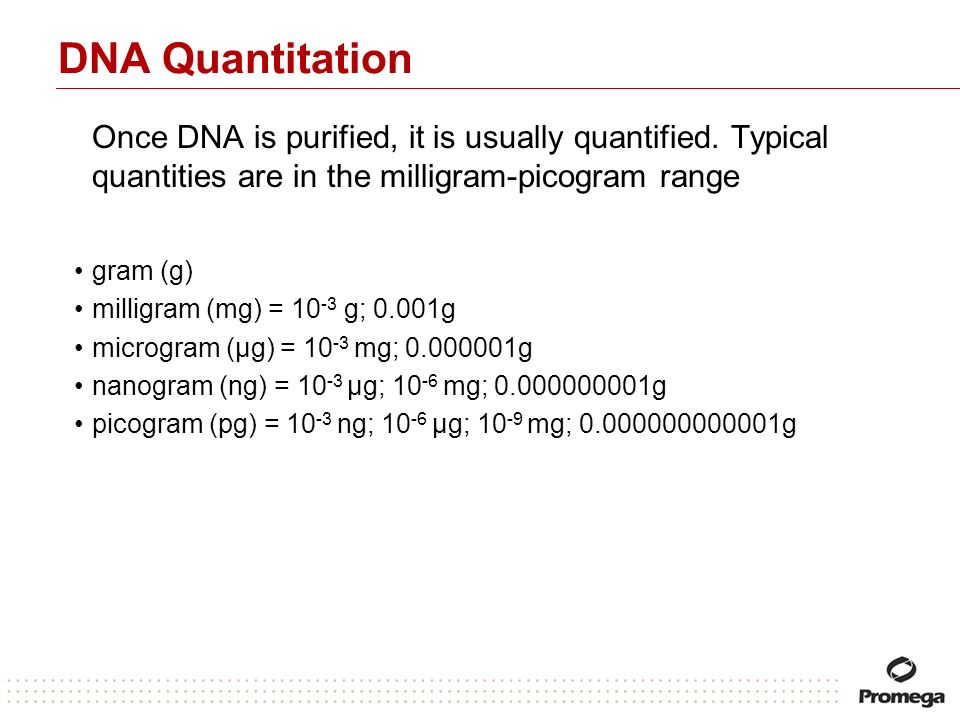 DNA Quantitation Once DNA is purified, it is usually quantified. Typical quantities are in the milligram-picogram range.
