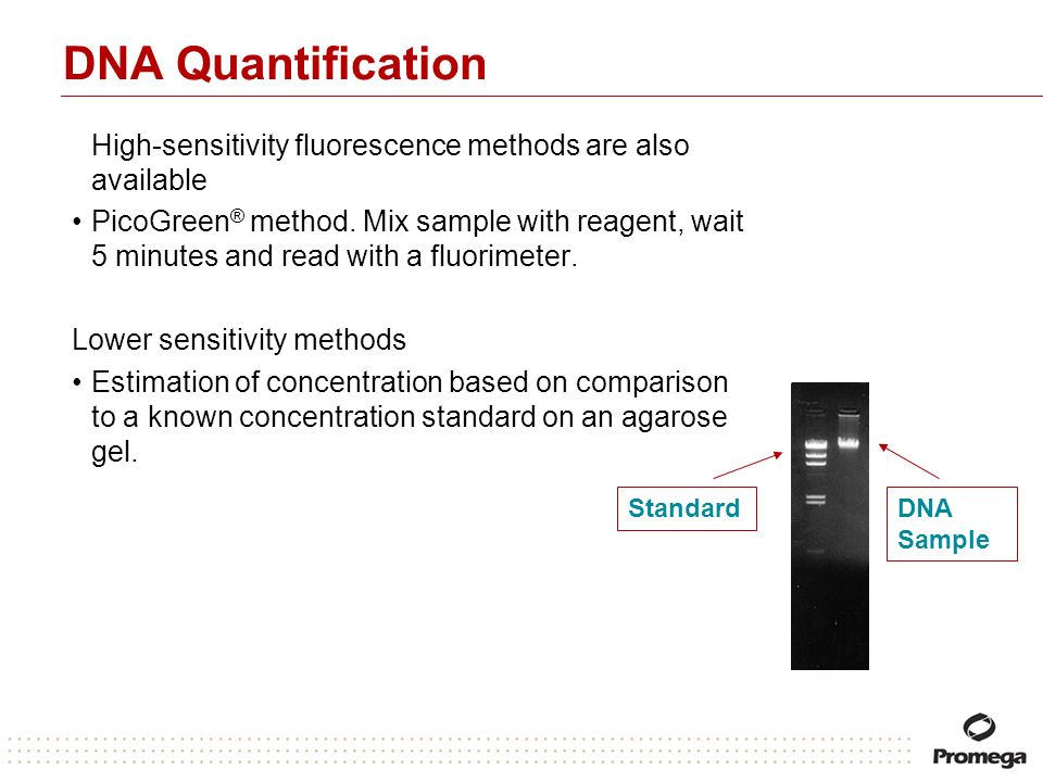 DNA Quantification High-sensitivity fluorescence methods are also available.