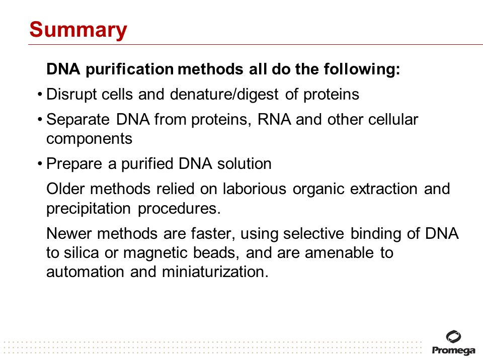 Summary DNA purification methods all do the following: