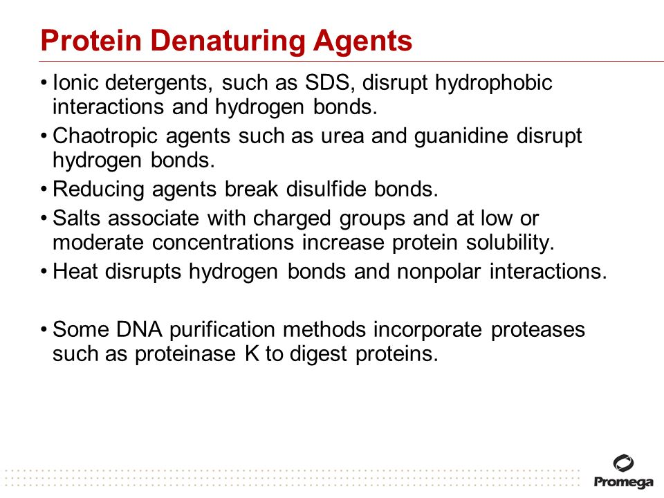 Protein Denaturing Agents