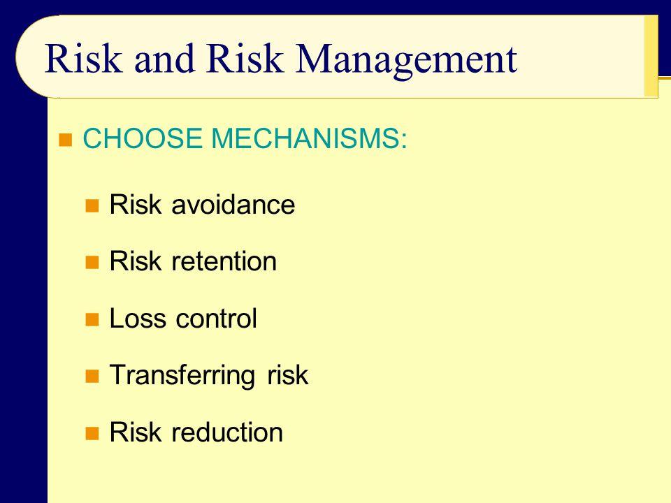 Risk and Risk Management