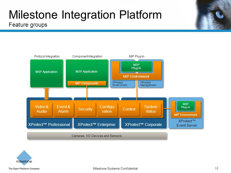 Milestone Integration Platform Feature groups