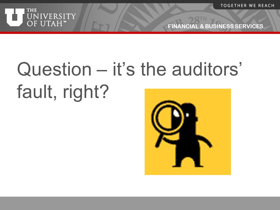 Question – it's the auditors' fault, right