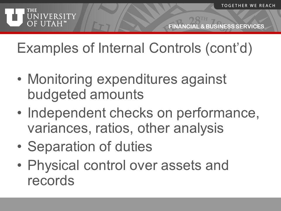 Examples of Internal Controls (cont'd)