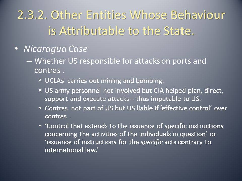 2.3.2. Other Entities Whose Behaviour is Attributable to the State.