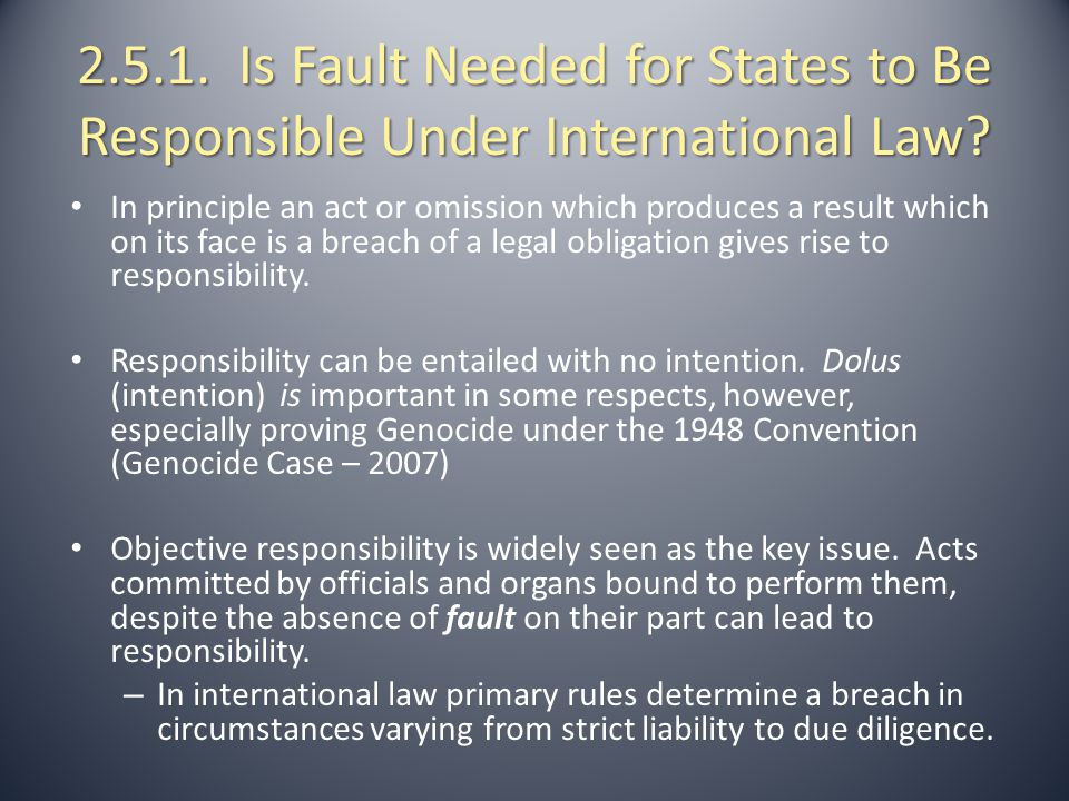 2.5.1. Is Fault Needed for States to Be Responsible Under International Law