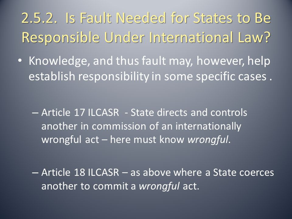 2.5.2. Is Fault Needed for States to Be Responsible Under International Law