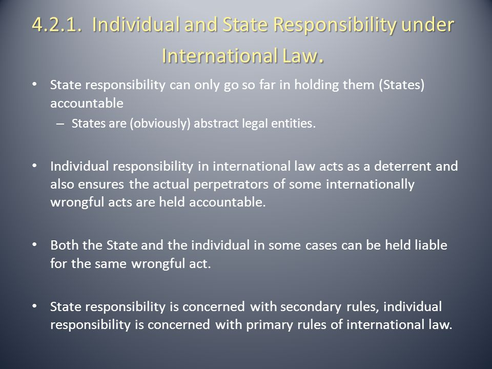 4.2.1. Individual and State Responsibility under International Law.