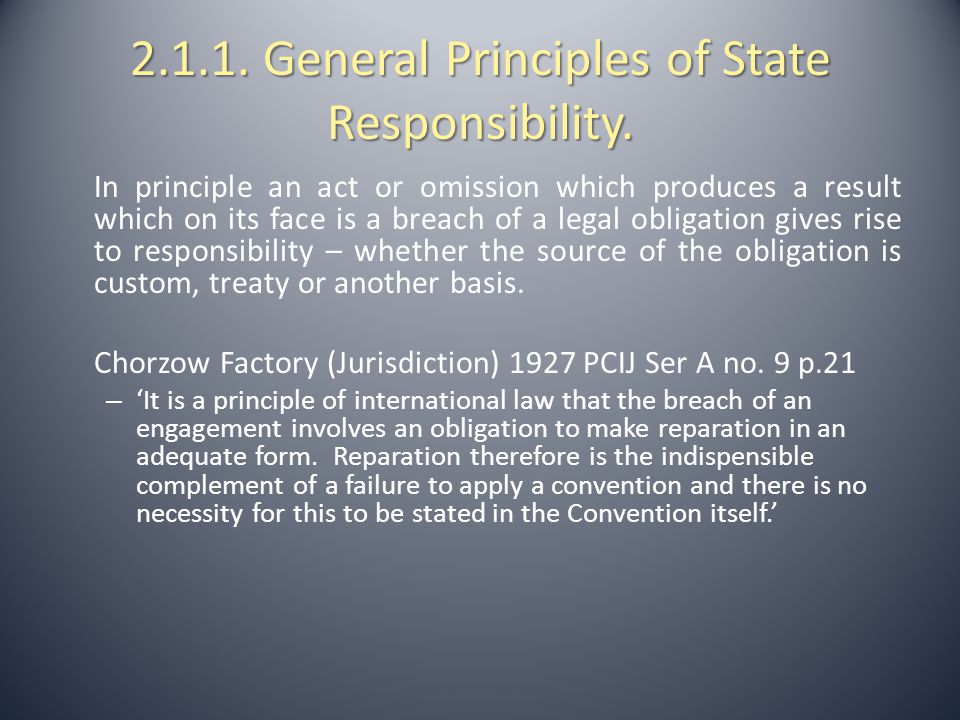 2.1.1. General Principles of State Responsibility.
