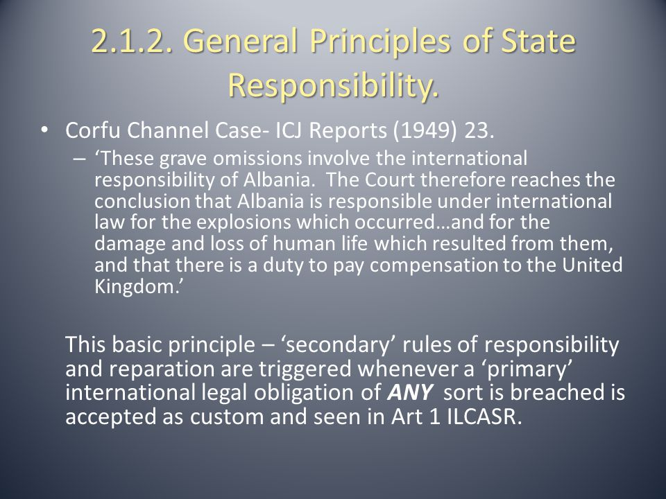 2.1.2. General Principles of State Responsibility.