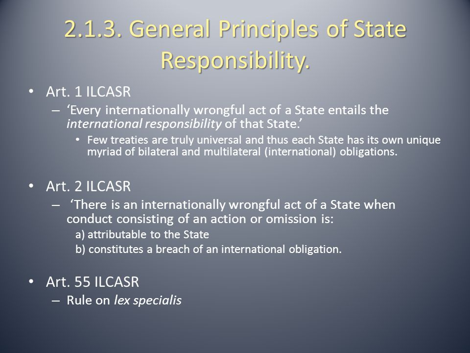 2.1.3. General Principles of State Responsibility.