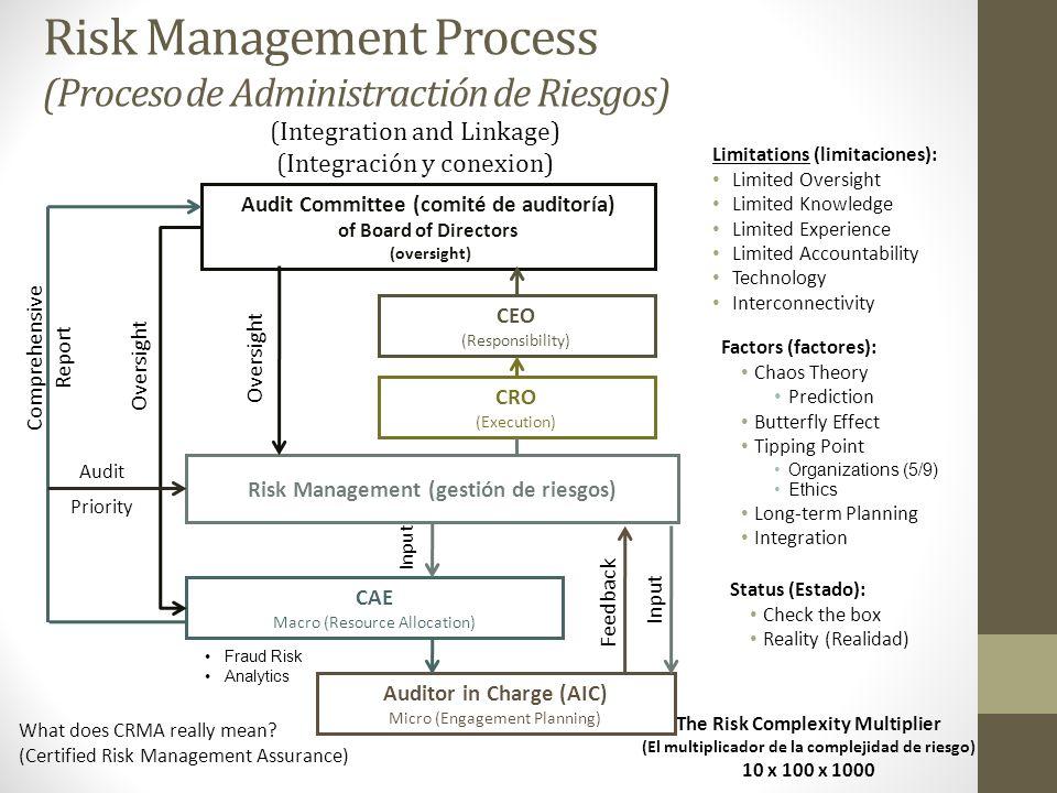 Risk Management Process (Proceso de Administractión de Riesgos)
