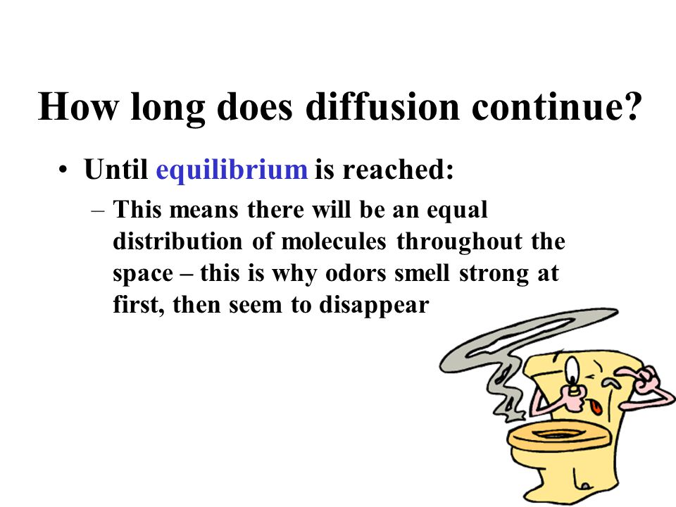 How long does diffusion continue