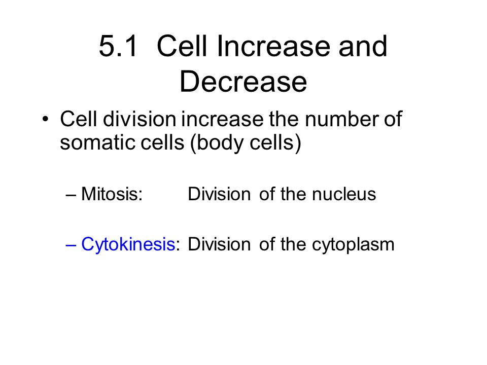 5.1 Cell Increase and Decrease