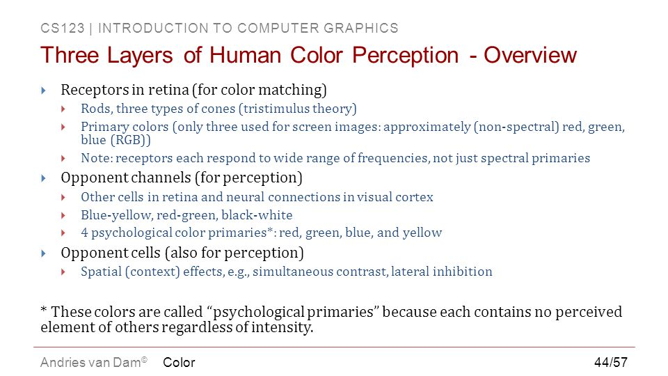 Three Layers of Human Color Perception - Overview