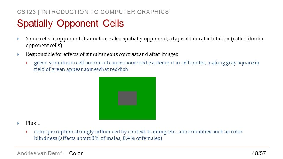 Spatially Opponent Cells