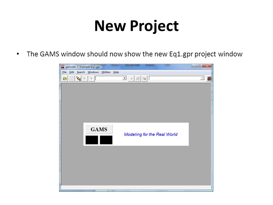 New Project The GAMS window should now show the new Eq1.gpr project window