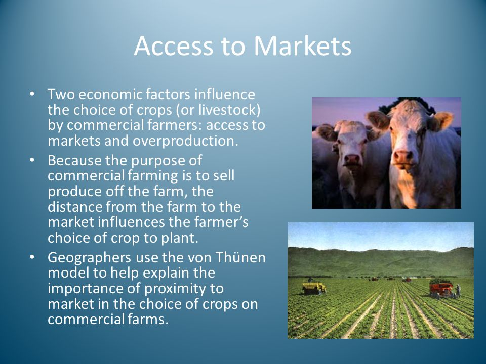 Access to Markets Two economic factors influence the choice of crops (or livestock) by commercial farmers: access to markets and overproduction.